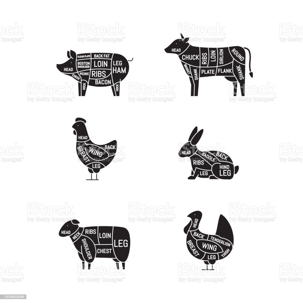 hight resolution of diagrams for butcher shop meat cuts animal silhouette pig cow lamb