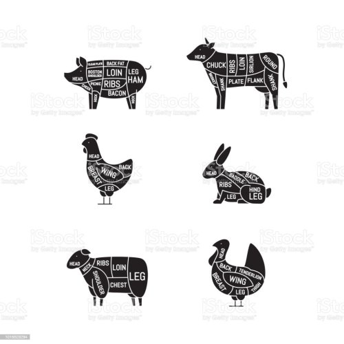 small resolution of diagrams for butcher shop meat cuts animal silhouette pig cow lamb