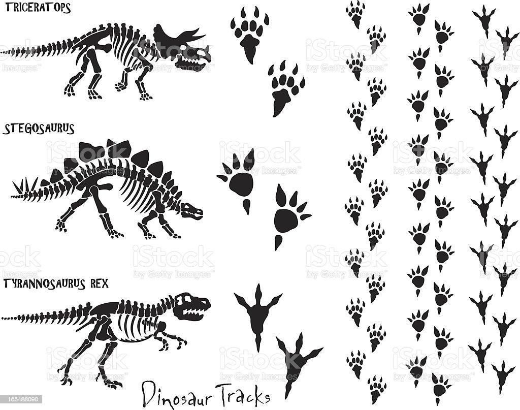 Ilustración de Skeleton Huellas De Dinosaurios y más