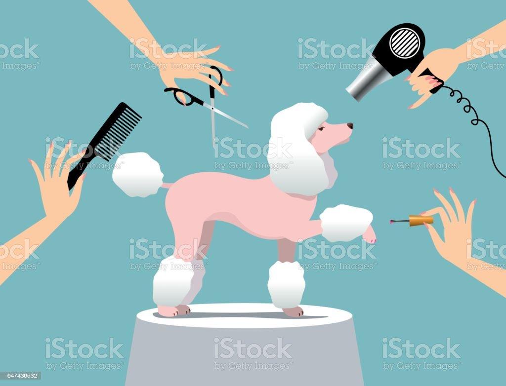 dog grooming stock vector art &
