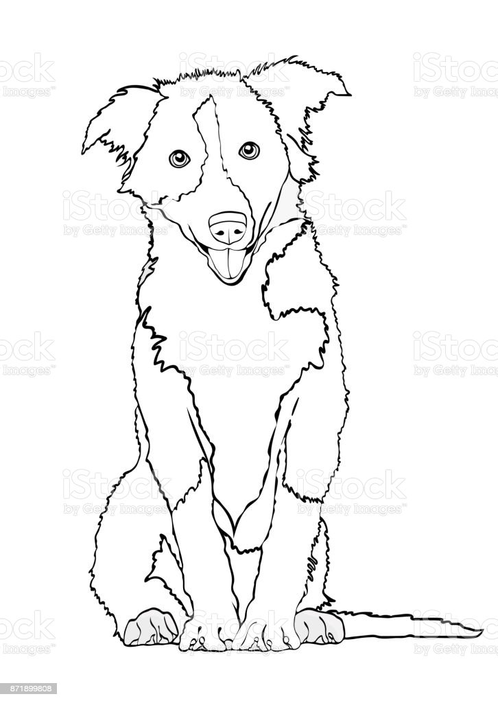 Dog Vector Outline Drawing Sketch Coloring Book Black And