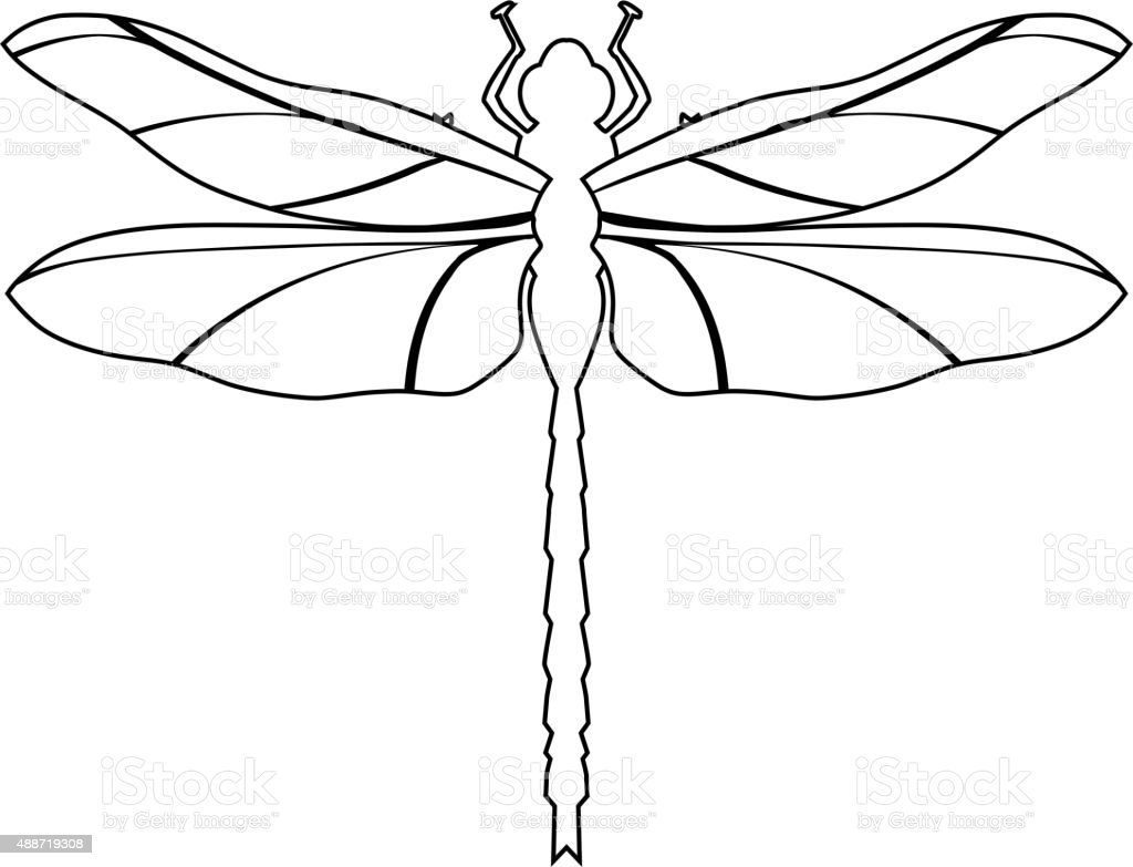 royalty free damselfly clip art