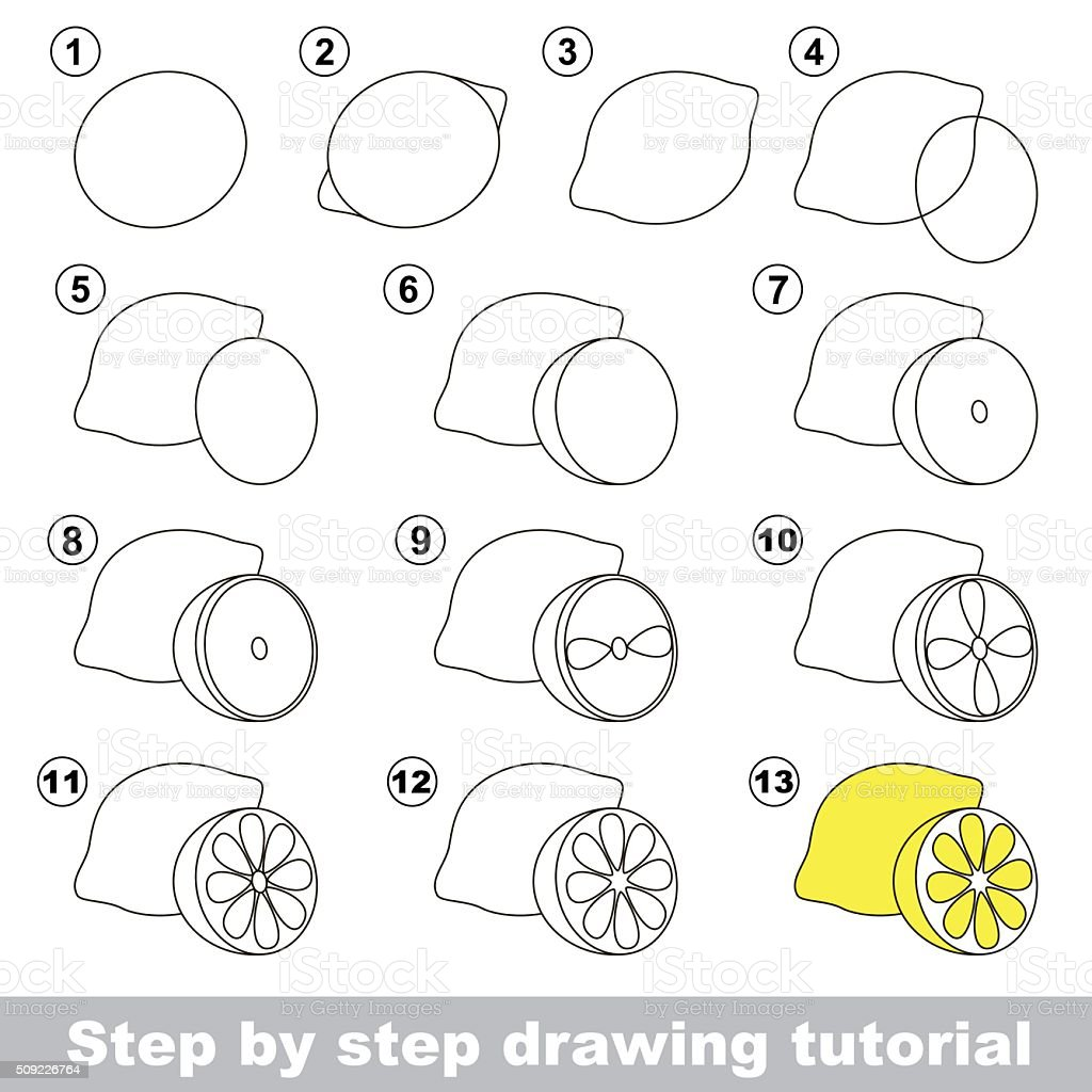 Drawing Tutorial How To Draw A Lemon Stock Vector Art
