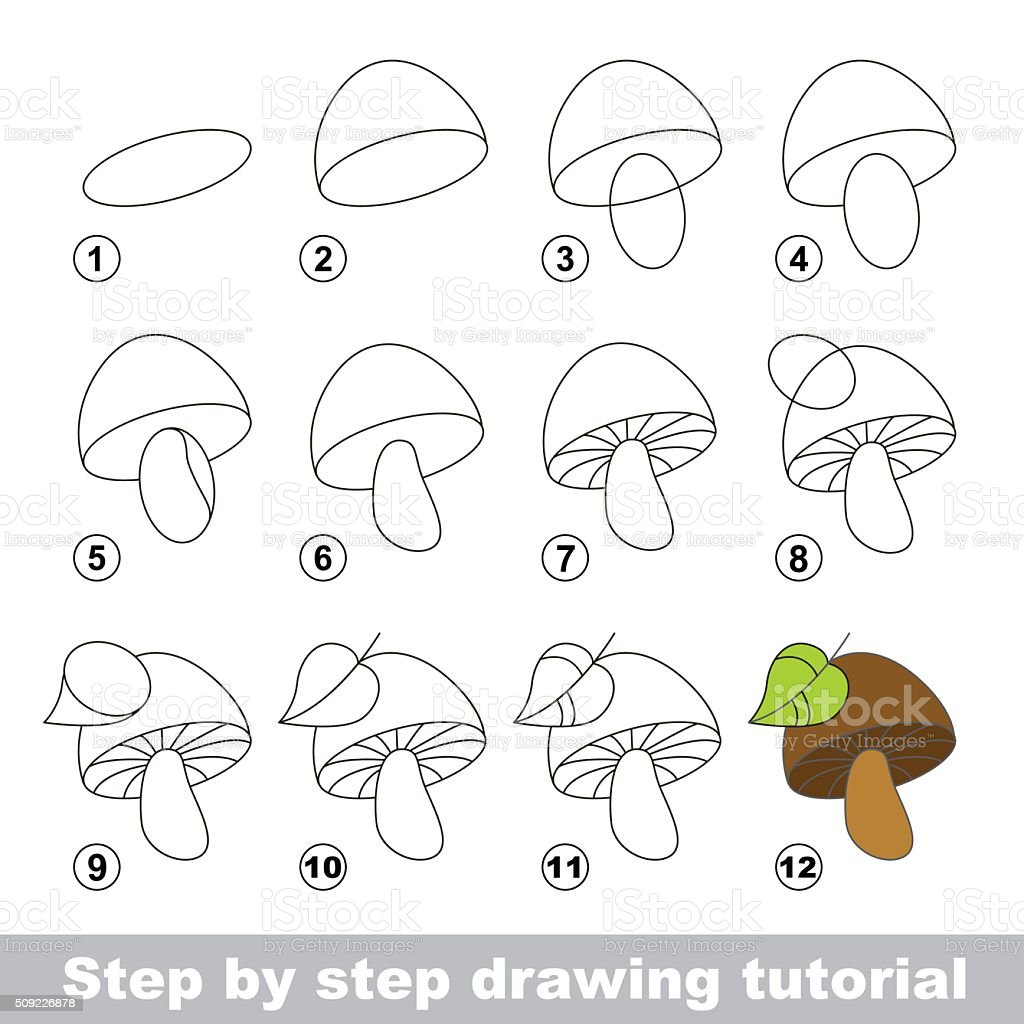 Drawing Tutorial How To Draw A Mushroom Stock Illustration