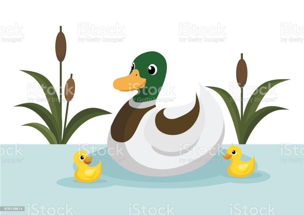 royalty free pond clip art vector