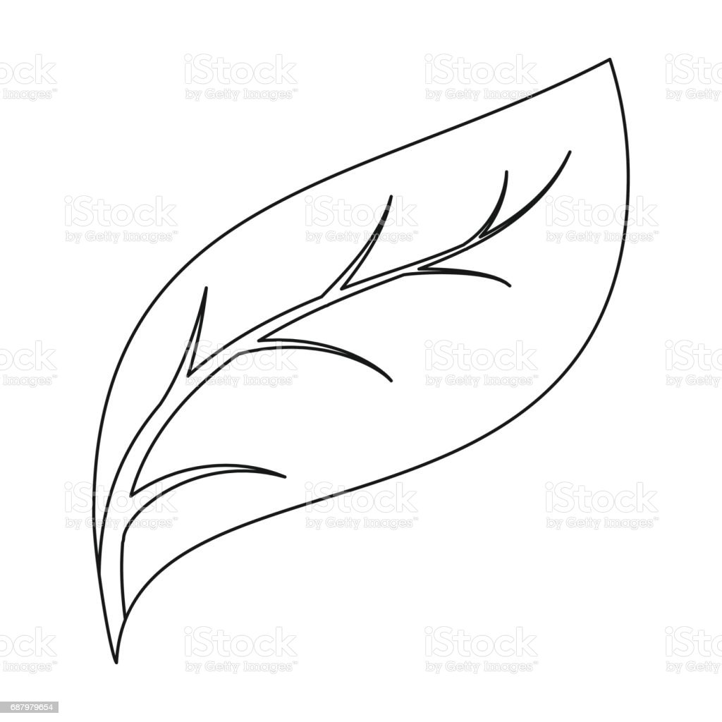 Eco Leaf Icon In Outline Style Isolated On White