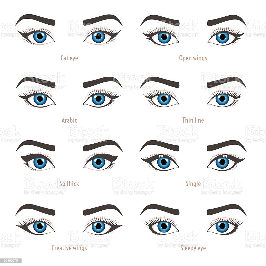 Eye Makeup Types Eyeliner Shape Tutorial Vector Set With