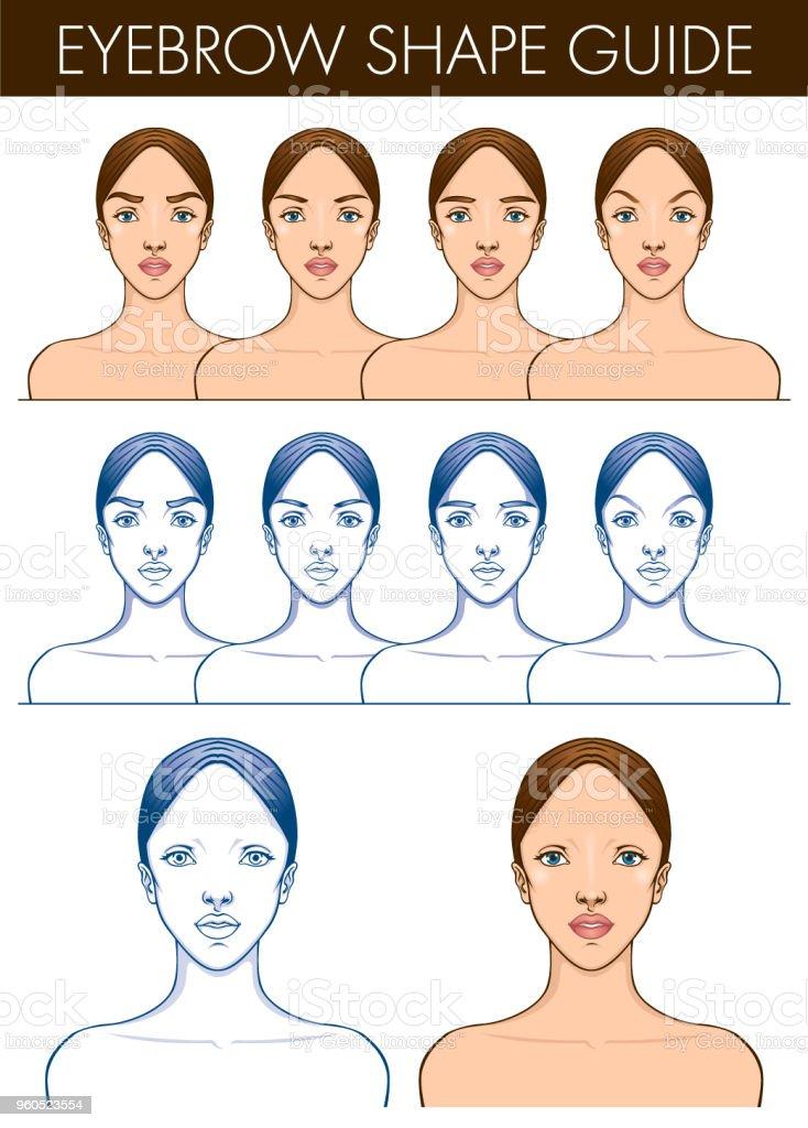 Eyebrow Shape Chart : eyebrow, shape, chart, Eyebrow, Shape, Guide, Stock, Illustration, Download, Image, IStock