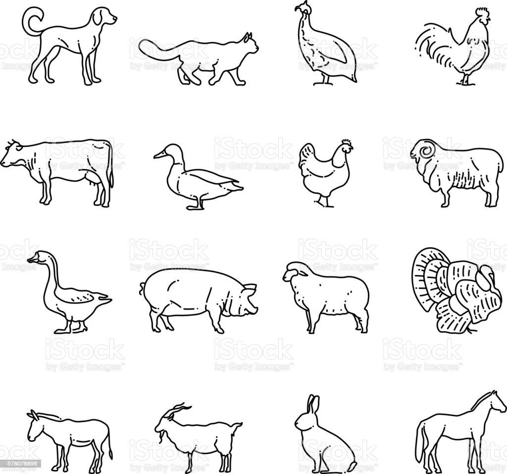 Farm Animals Vector Thin Line Icons Set Outline Cow Pig