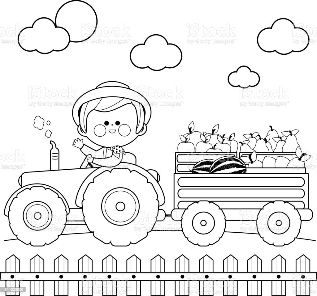 Farmer At The Farm Driving A Tractor And Carrying Fruits