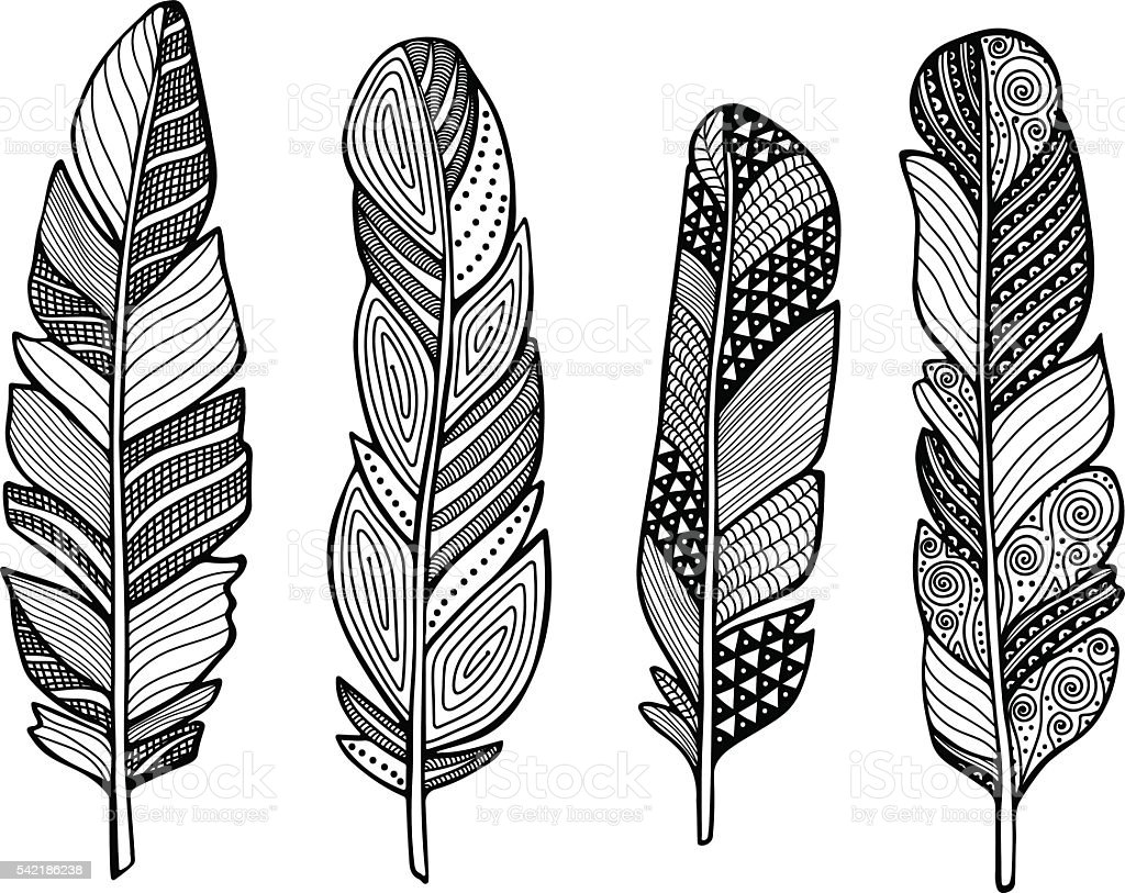 feather vector set stock