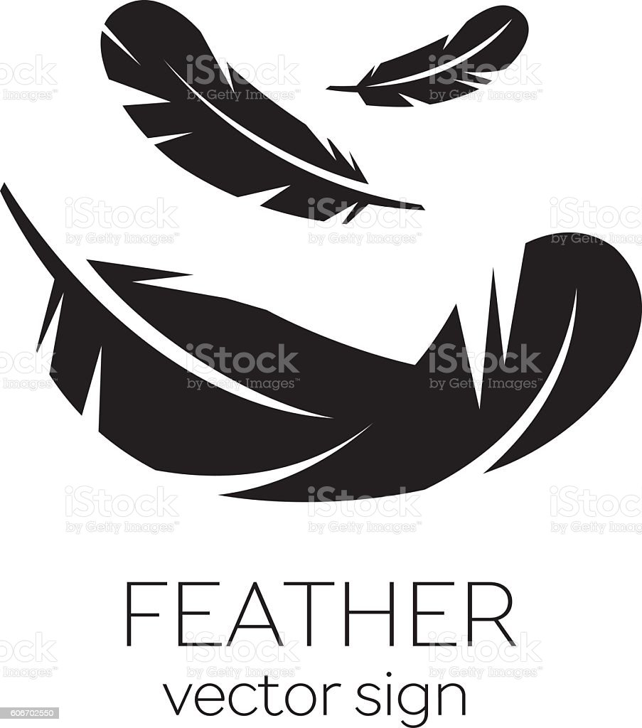 best feather illustrations royalty