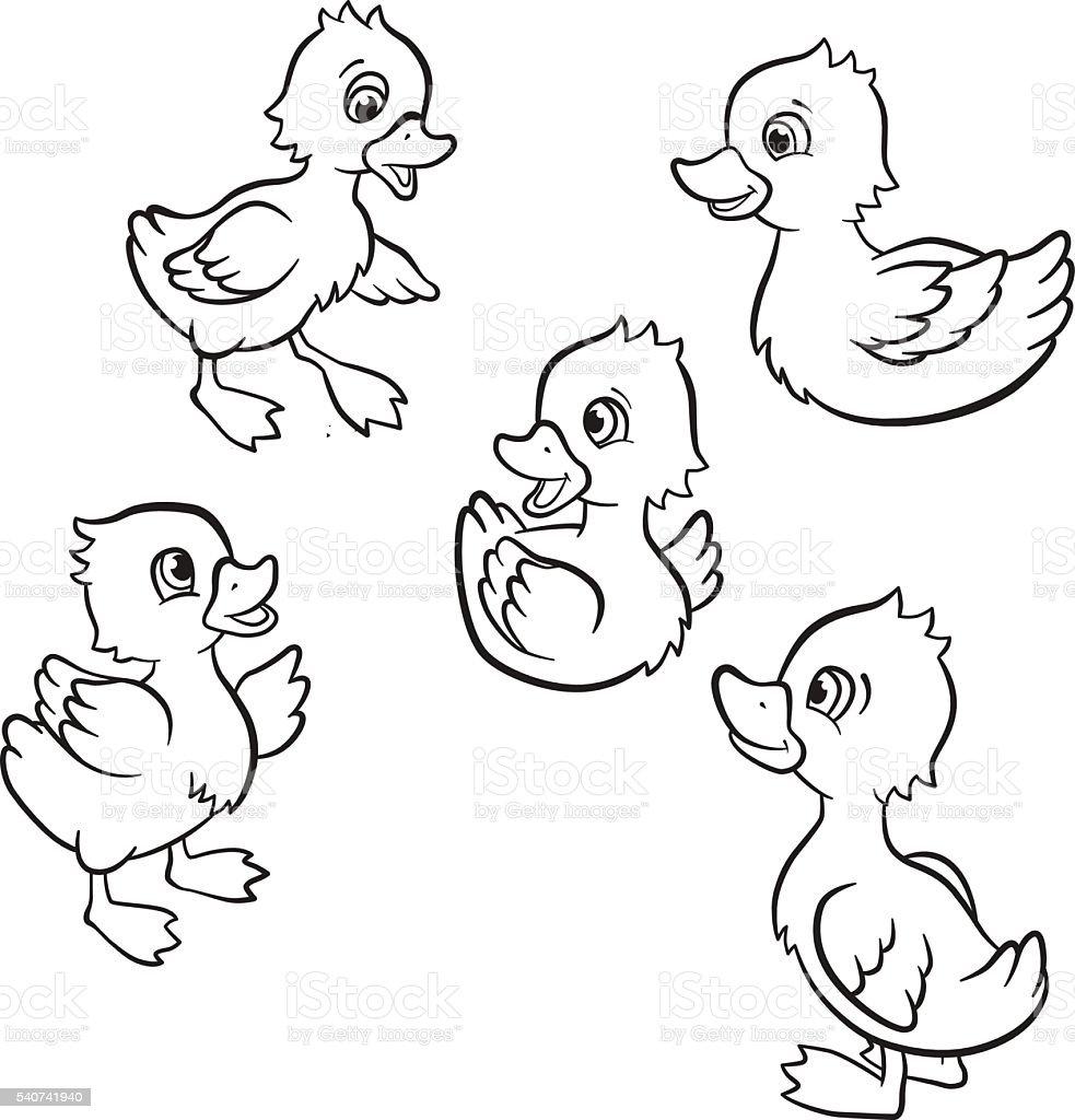 Five Little Cute Ducklings Stock Vector Art & More Images