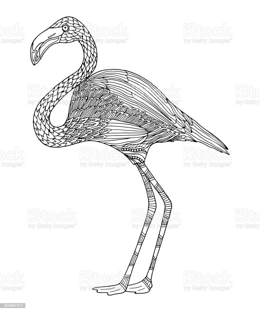 Flamingo Malvorlage Einfach Coloring and Malvorlagan