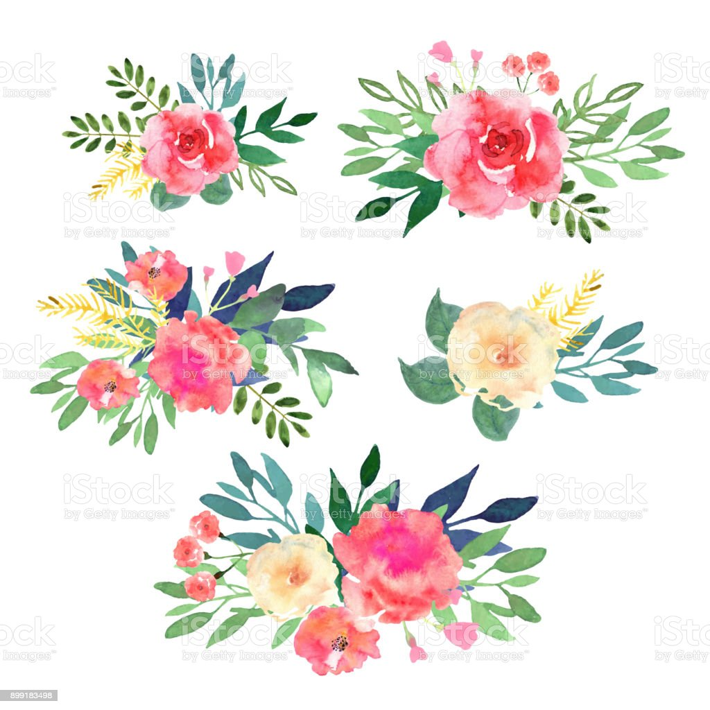best flower illustrations royalty
