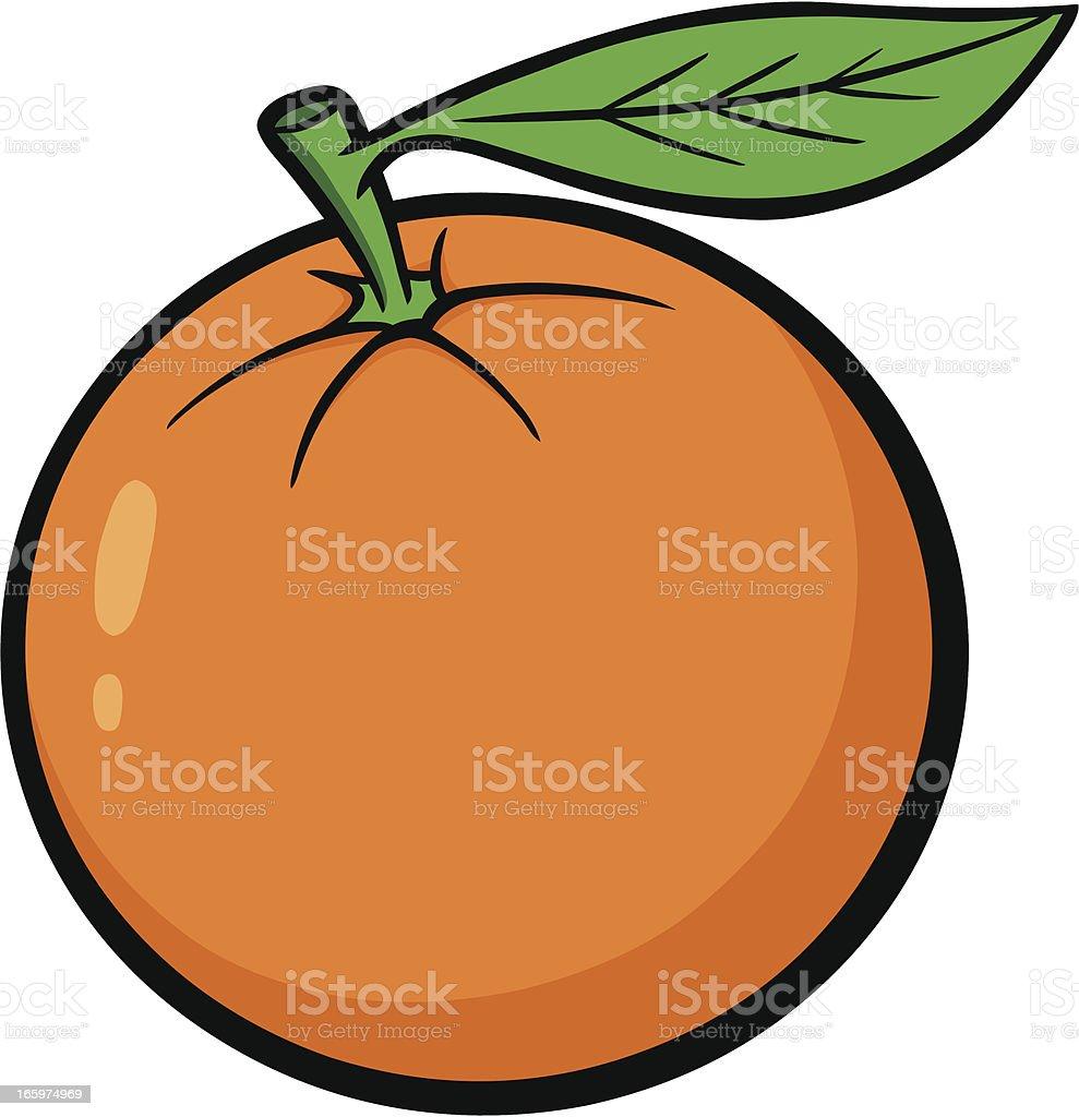 oranges clip art vector
