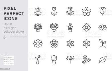 1 856 204 Flower Illustrations Royalty Free Vector Graphics & Clip Art iStock