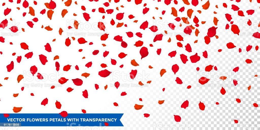 Falling Cherry Blossom Wallpaper Hd Vetor De Confetti De P 233 Talas De Flores Caindo Sobre Fundo