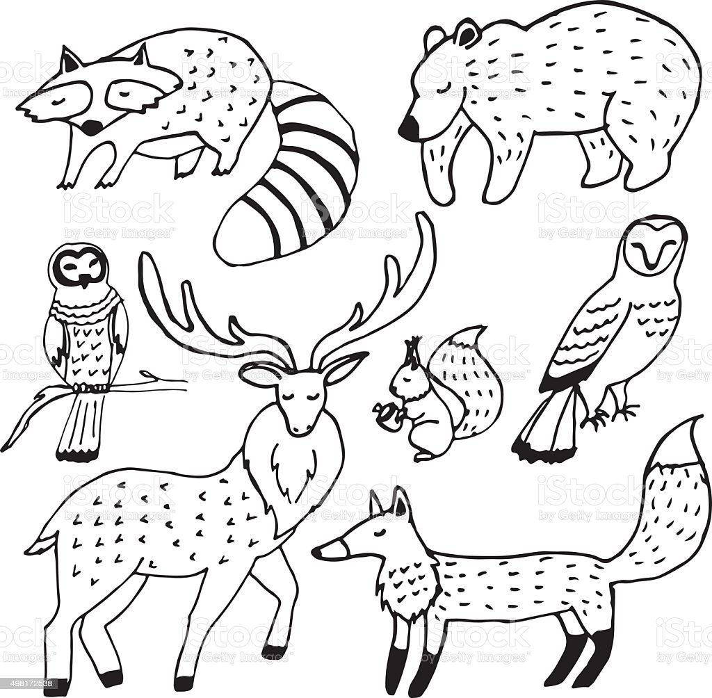 When you purchase through links on our site, we may earn an affiliate commission. Forest Animals Drawings Ink Set Stock Illustration Download Image Now Istock
