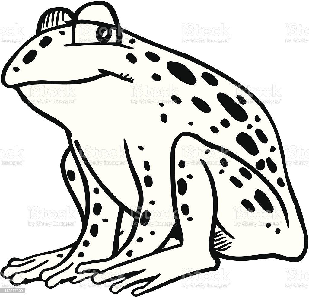 Best Frog Clipart Black And White Illustrations Royalty