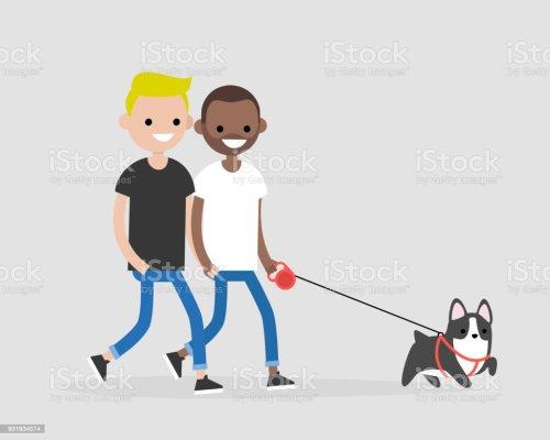 small resolution of casal gay passeando com um cachorro vida di ria dos propriet rios do animal de estima o