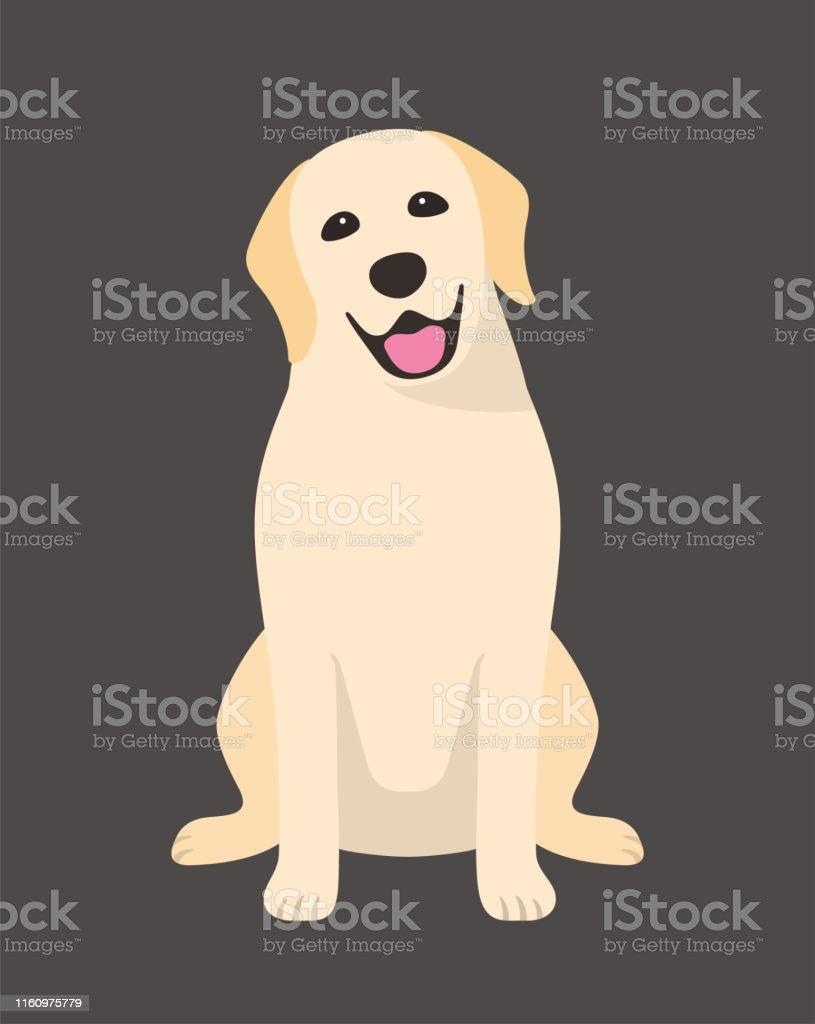 Yellow Lab Cartoon : yellow, cartoon, 6,861, Labrador, Retriever, Illustrations, IStock