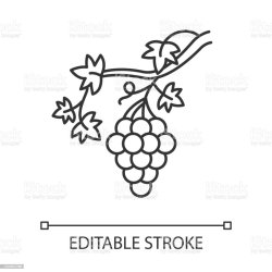 Free Grape Outline Clipart in AI SVG EPS or PSD