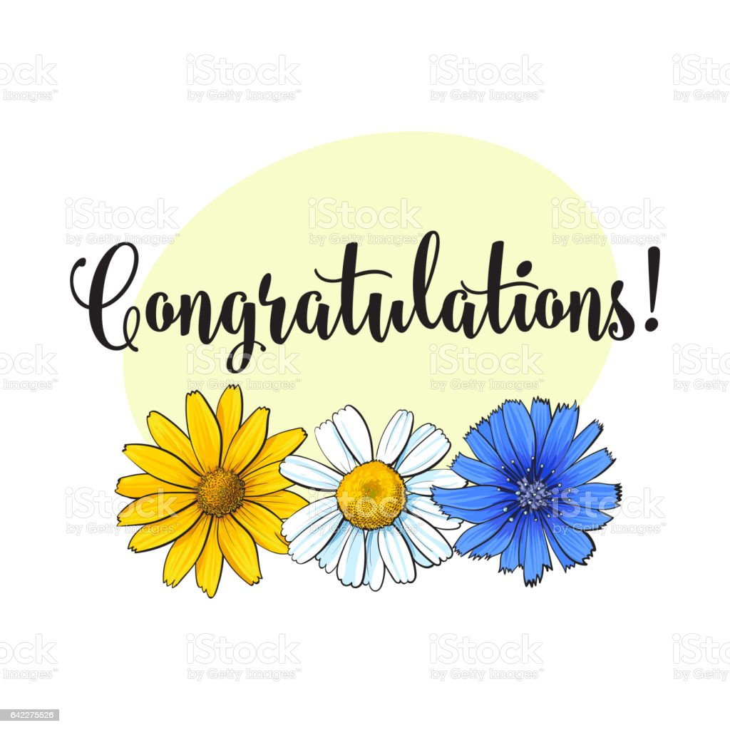 Greeting Card, Postcard Template With Wild, Field Flowers And  Congratulations Royalty-Free Greeting