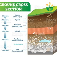 Soil Profile Diagram Of Michigan Delco Am Radio Wiring Ground Cross Section Vector Illustration With Organic