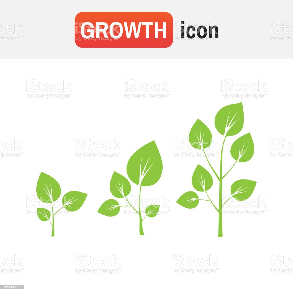 hight resolution of growth tree sign vector tree growth diagram illustration