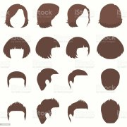 hair vector hairstyle silhouette