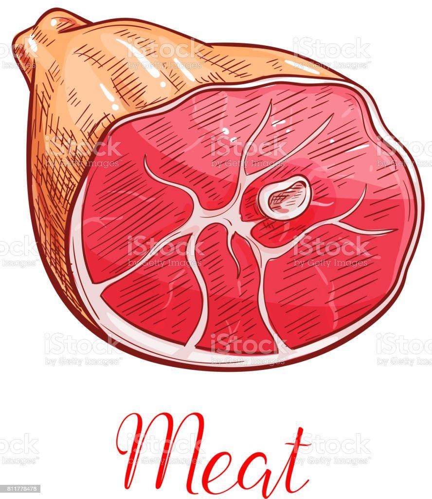 medium resolution of ham meat isolated sketch with smoked pork leg illustration