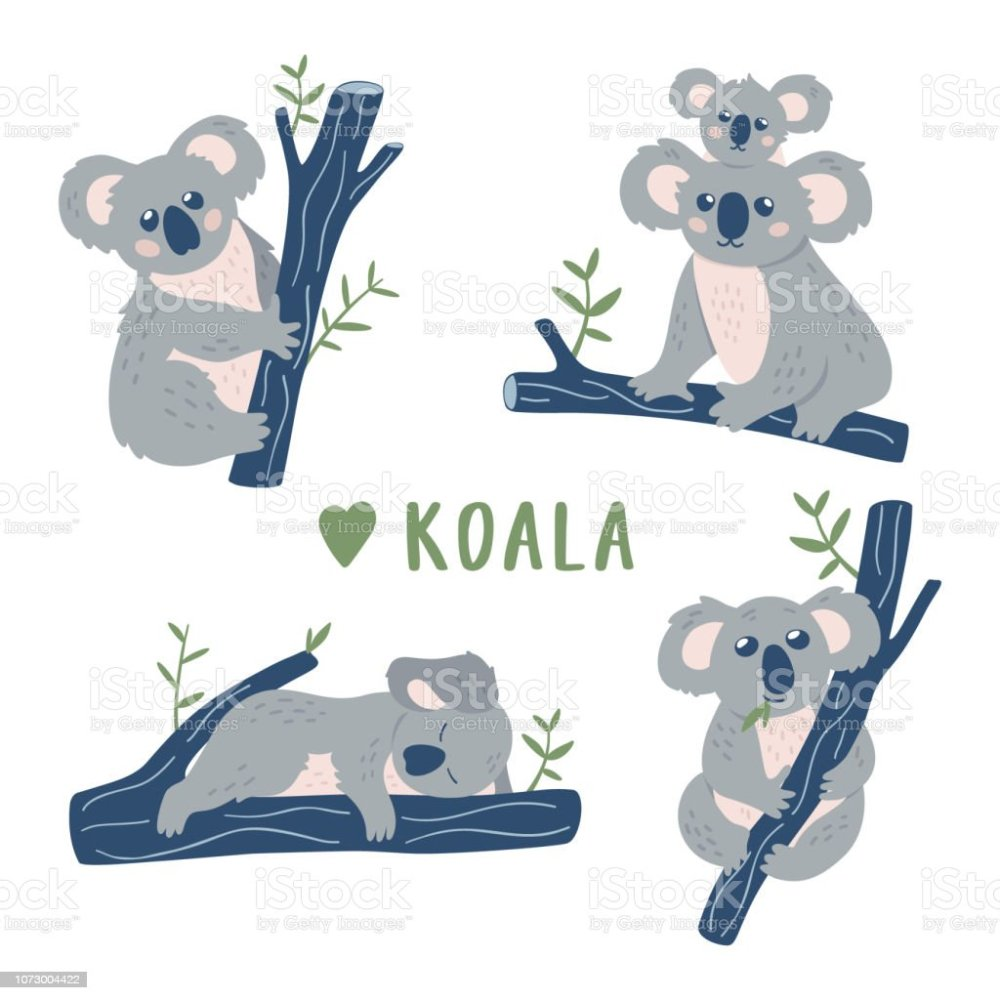 medium resolution of hand drawn doodle koala bears collection cute koala design template vector clipart royalty