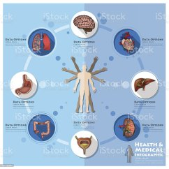 Foot Pulses Diagram 2000 Gmc Jimmy Wiring Royalty Free Clip Art Vector Images Illustrations
