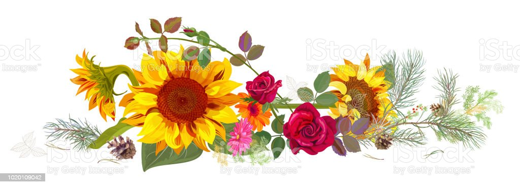 sunflower bouquet illustrations