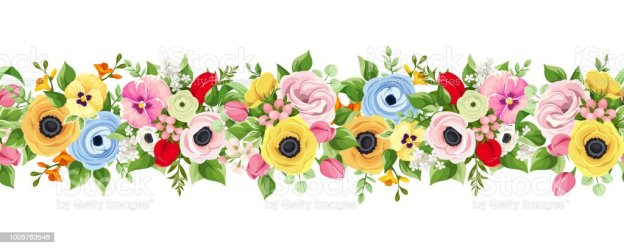 horizontal flowers colorful background vector flower illustration seamless colored clip gerbera illustrations backgrounds pattern