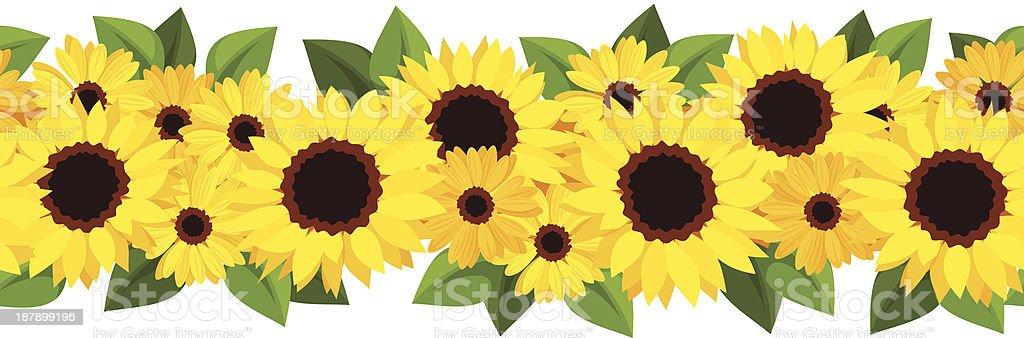 sunflower garland illustrations