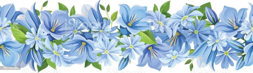 border flowers horizontal vector seamless backgrounds bluebell blossom russia