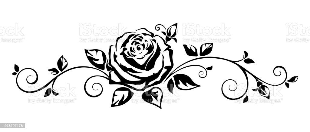 Horizontal Vignette With A Rose Vector Illustration Stock