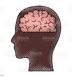 human face brown silhouette with brain inside in colored crayon silhouette royalty free human face [ 1024 x 1024 Pixel ]