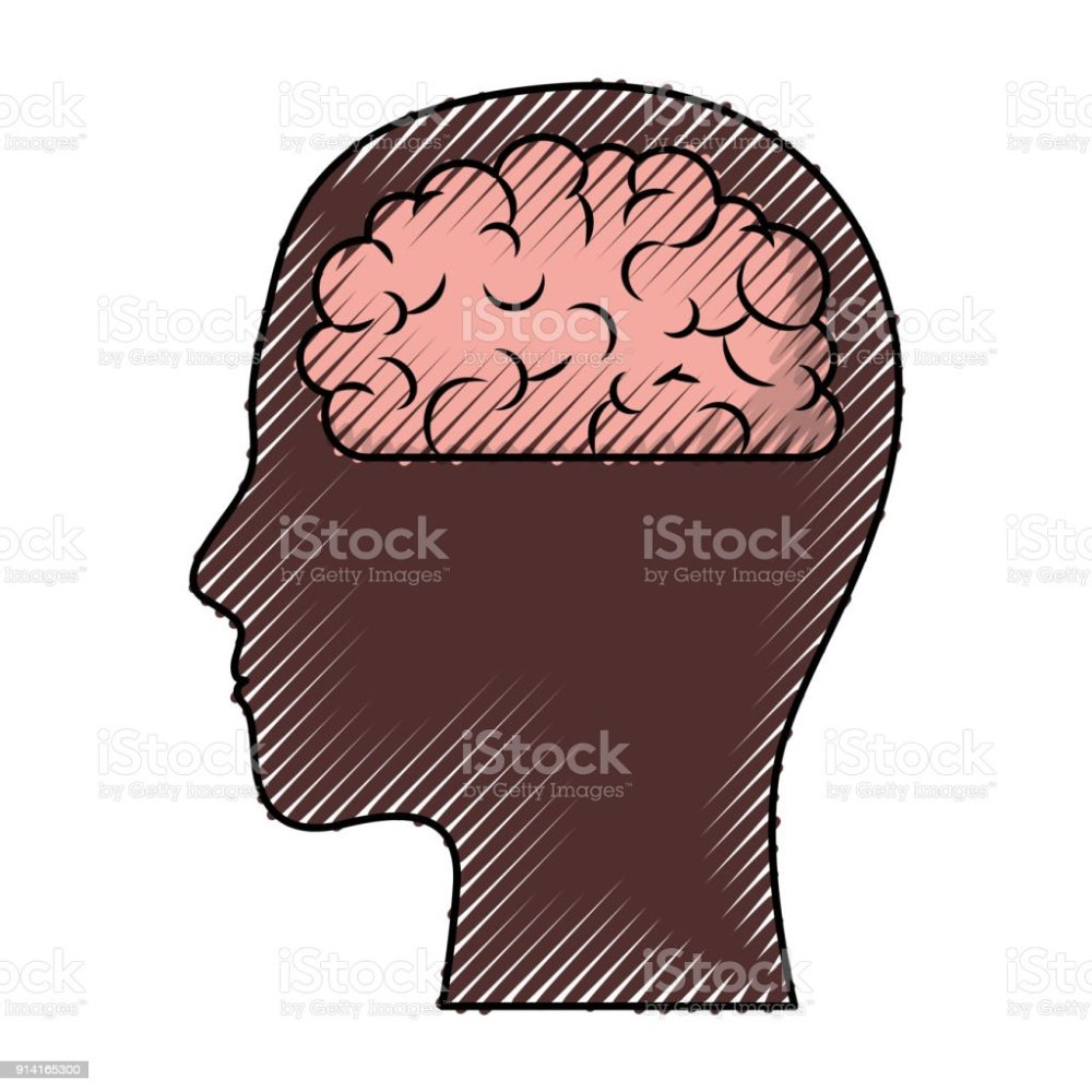 medium resolution of human face brown silhouette with brain inside in colored crayon silhouette royalty free human face