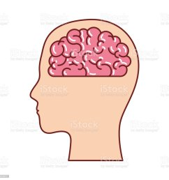 human face silhouette with brain inside in colorful silhouette with brown contour royalty free stock [ 1024 x 1024 Pixel ]
