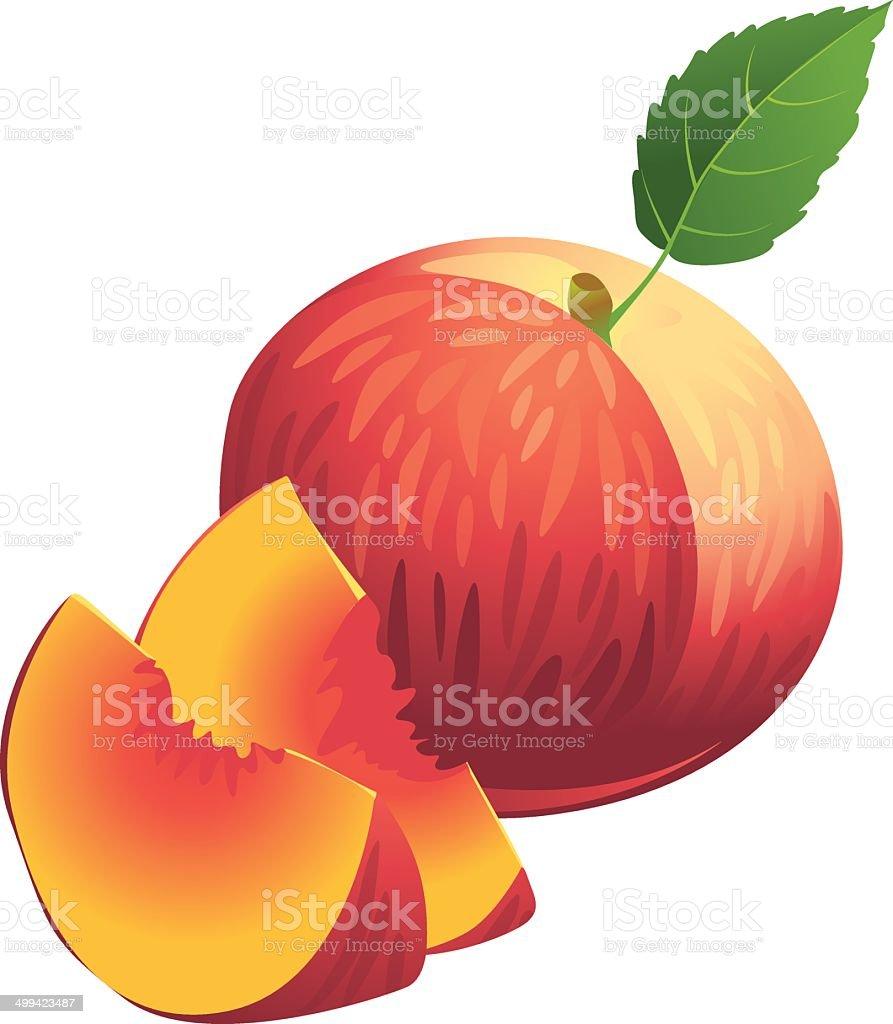 royalty free peach clip art vector