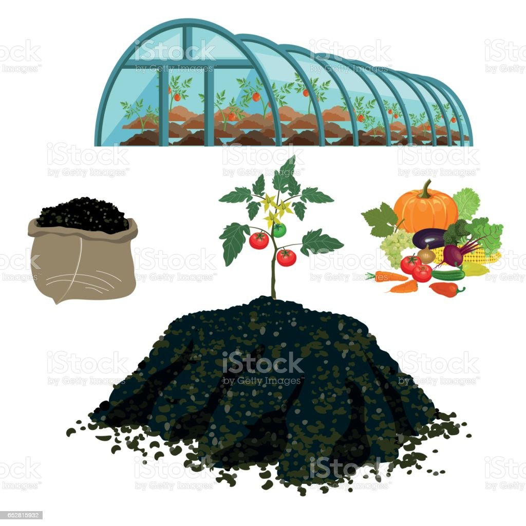 compost pile illustrations