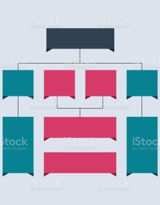 Infographics flowchart colored schemes diagrams web designs business structure concept vector also rh istockphoto