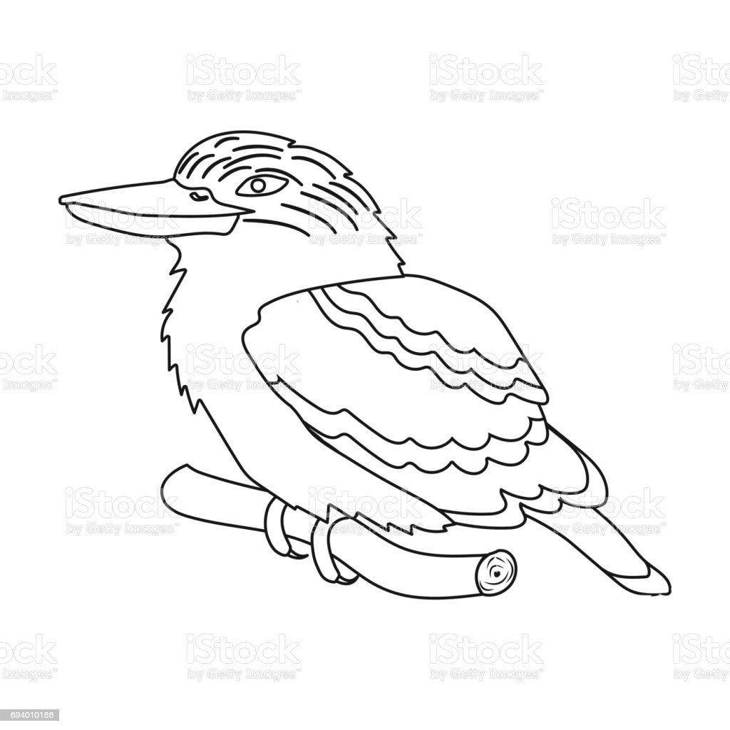 Kookaburra Sitting On Branch Icon In Outline Style