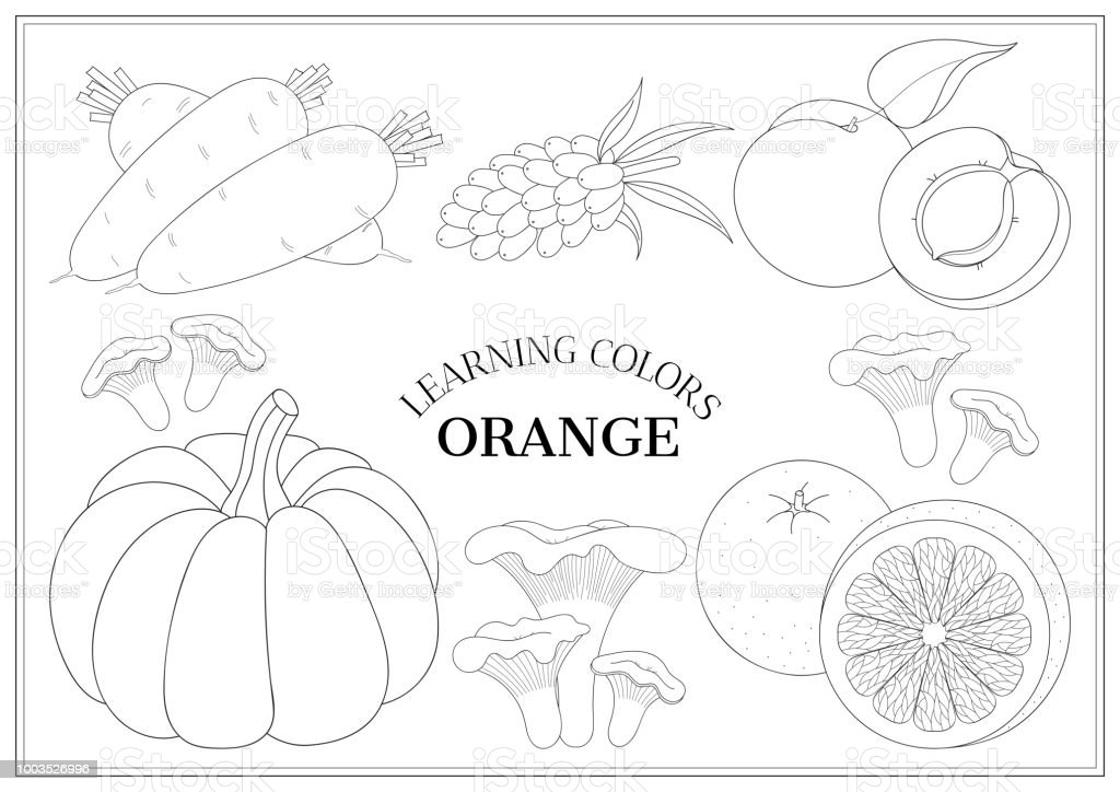 Learning Colors Orange Coloring Book Page For Preschool