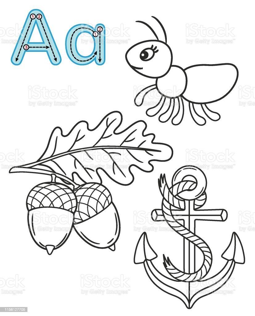 Letter A Anchor Ant Acorn Vector Coloring Book Alphabet