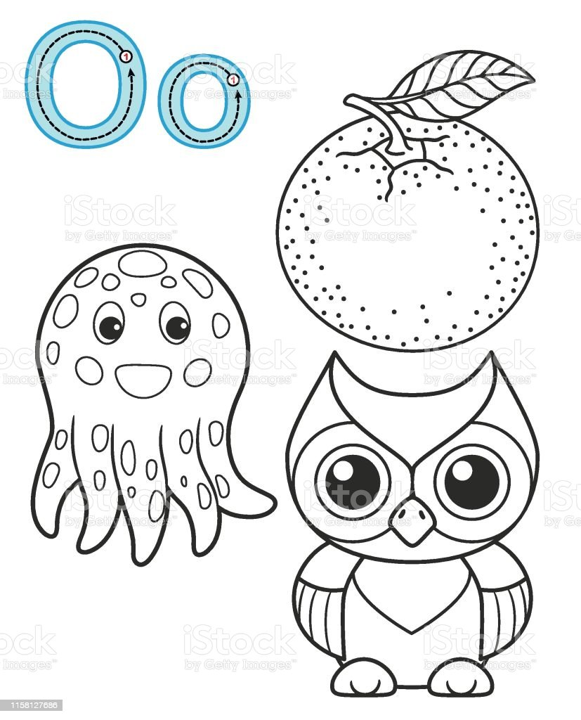 Letter O Orange Owl Octopus Vector Coloring Book Alphabet