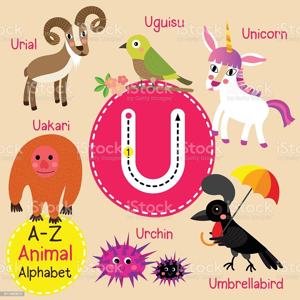 hight resolution of letter u tracing unicorn umbrellabird urchin uguisu uakari urial